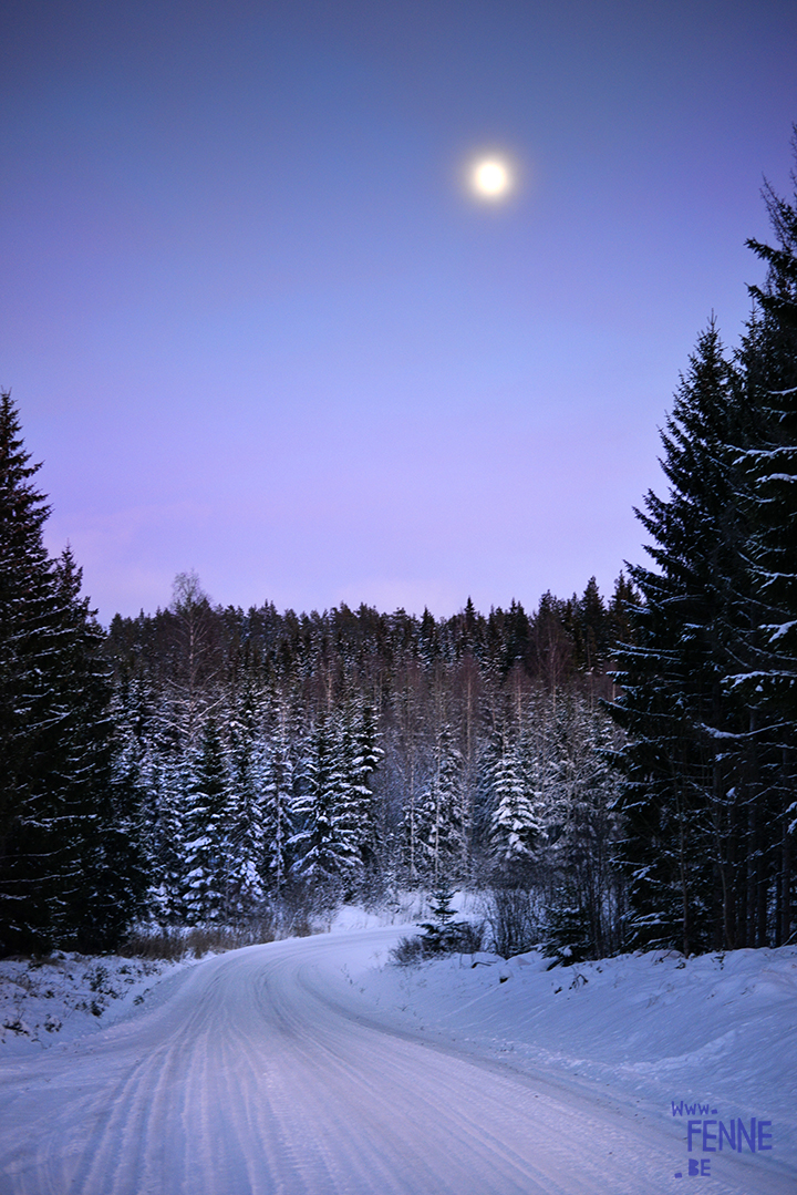Night, moonlight and snow | www.Fenne.be