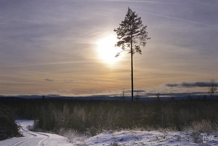 Winter hike | www.Fenne.be