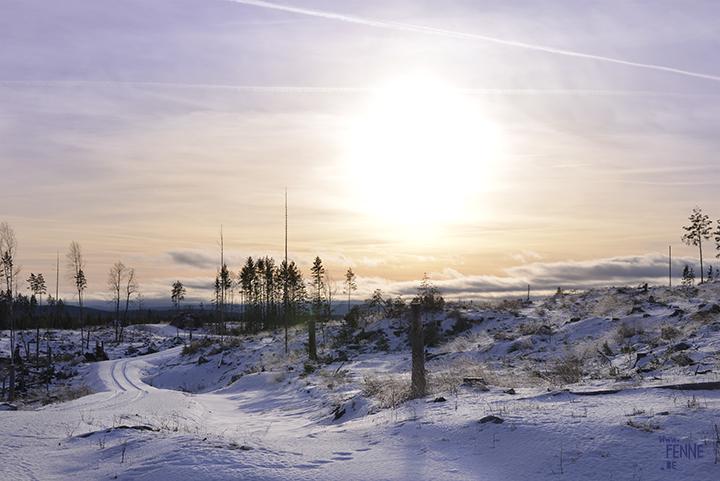 Sweden | Dalarna | winter walk | www.Fenne.be