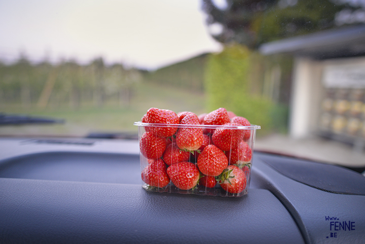 Sweet fresh Belgium strawberries! | Foodie | www.Fenne.be
