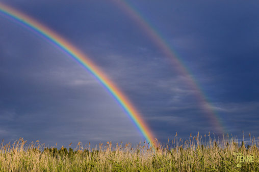 Rainbow   nature photography   www.Fenne.be