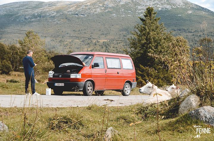 Volkswagen California | travel | Norway | www.Fenne.be