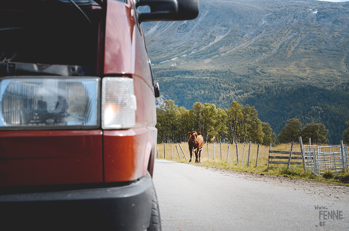 Road trip Norway with a Volkswagen California campervan, www.fenne.be