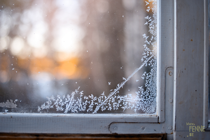 Winter is drawing on my window | winter in Sweden | nature photography | www.Fenne.be