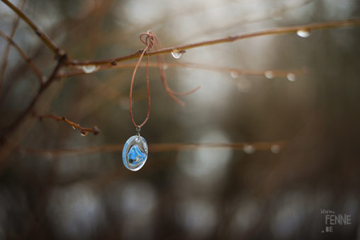 New experiments: Take your nature with you. #Sweden #nature #pendant