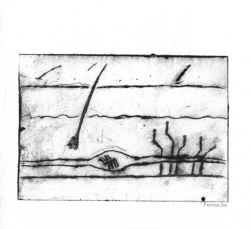 Fear of vaccines, dry point needle etch illustration, www.Fenne.be