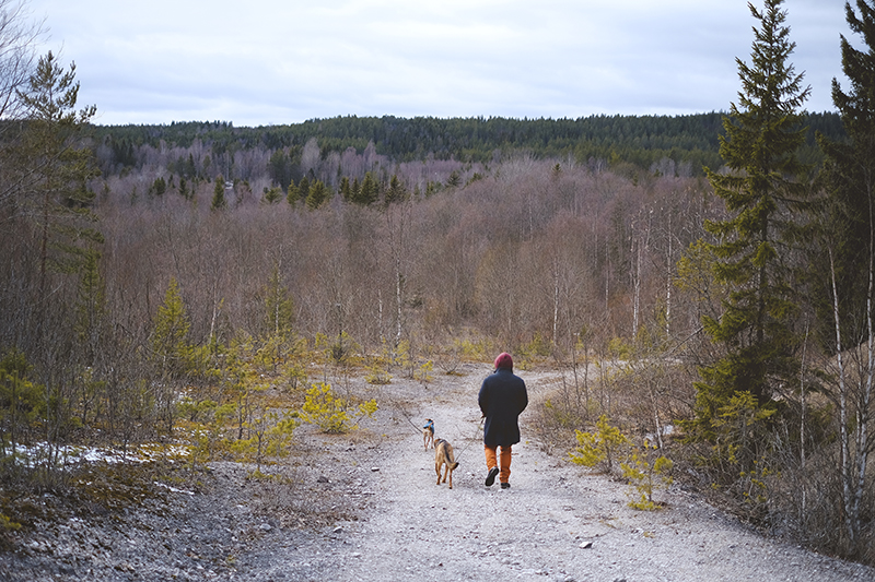 Visiting old mines in Sweden, Dalarna, hiking in Sweden, local travel, Nordic nature, Nordic lifestyle, www.Fenne.be