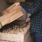 Serafina potatoes from Hedemora, countryside life, country living, Sweden, www.Fenne.be